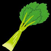 vegetable_celery